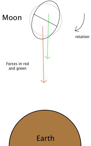 tidal_forces